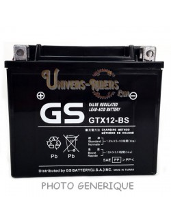 Batterie GS 12N5-3B