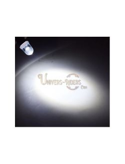 Ampoule LED BA9S T4W Blanc 180° (plaque d'immatriculation)