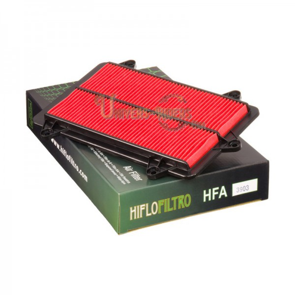 Filtre à air HIFLOFILTRO HFA3903