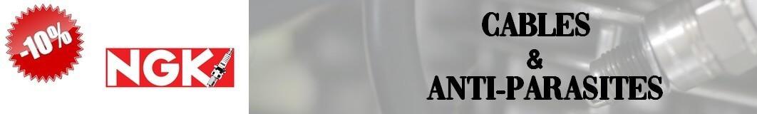 Cables - Anti parasites NGK Moto